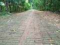 Ancient Road built by Khan Jahan (6).jpg
