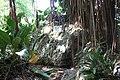 Andromeda Botanical Gardens 10.jpg