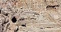 Anfiteatro romano de Tarragona. Detalle 18.jpg