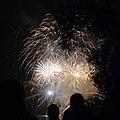Annual fireworks festival on the Brno dam - panoramio.jpg