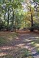 Appleslade Bottom, New Forest National Park - geograph.org.uk - 1018764.jpg