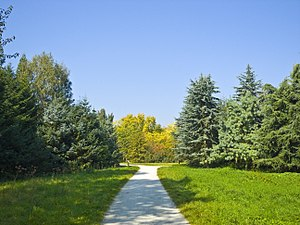 Image of Arboretum Main-Taunus: http://dbpedia.org/resource/Arboretum_Main-Taunus