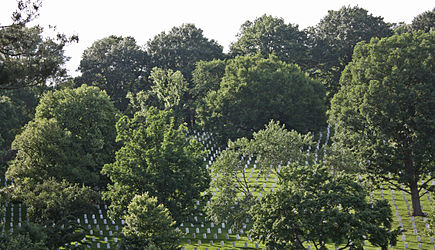 Arlington National Cemetery 2011.jpg