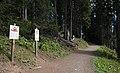 Arosa - Squirrel Trail.jpg
