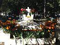 Arreglo de tumba en el Panteon Dolores.JPG