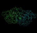 Aspartate aminotransferase.png