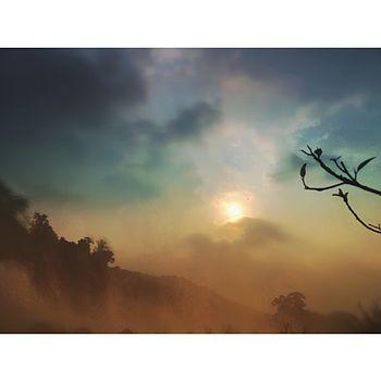 Athirappilly sundown.jpg