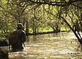 Attack Evolution, 2-8 Marines patrol, ambush and attack 160420-M-TV331-048.jpg