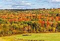 Autumn Scene (36810953464).jpg