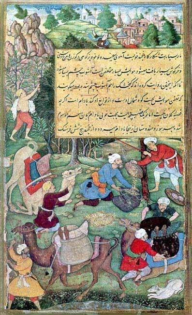 Baburnama illustration