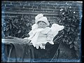 Baby in pram, early 1900s (5229537558).jpg