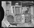 Back porch in home of Mr. Llewelyn, miner, who lives in company housing project. Royal Coal Company, Royal ^2 Mine... - NARA - 540438.tif