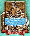 Badge Кострома.jpg