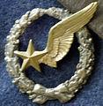 Badge observateur 12282.JPG