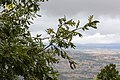 Baltar, Province of Ourense, Spain - panoramio (56).jpg