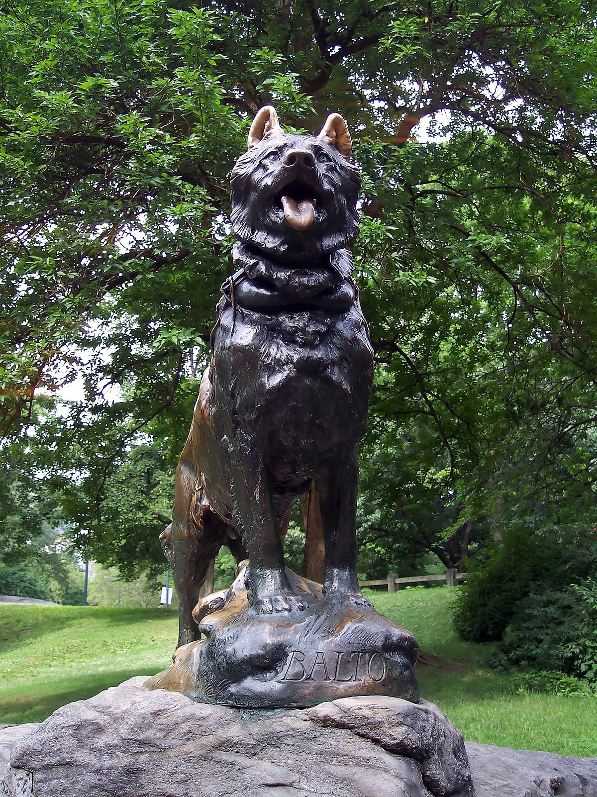 Hunden Balto