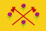 Bandeira Guarantã.png