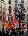 Barcelona Demonstration 1 (5836369067).jpg