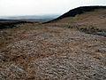 Barnside Moor - geograph.org.uk - 398788.jpg