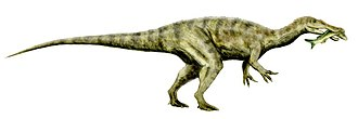 Dinosaurs of the Isle of Wight - Baryonyx, a large theropod, was found with fish scales in its stomach, indicating that it may have been a piscivore.