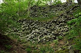Basaltprismenwand Gangolfsberg.jpg