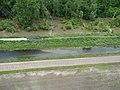 Bean Lake Levee (5885396018).jpg
