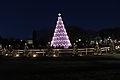 Beautiful Christmas tree.JPG