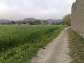 Beauty of my village in Mohmand Agency.jpg