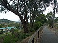 Belgrave rail trail - panoramio.jpg