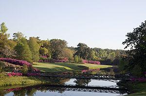 Bellingrath Gardens and Home - Azaleas in bloom from across Mirror Lake