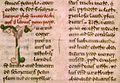 Benevento, Biblioteca Capitolare, Codice 4, f52v, Vita di Leone IX.jpg