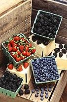 Berries (USDA ARS).jpg