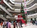Big-chritsmas-tree-chennai-forum-mall-1.jpg