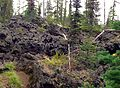 Big Lava Bed 04.JPG