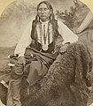 Big Tree, Kiowa Chief (5320247059) (cropped).jpg