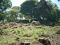 Bigbury Camp hillfort 01.JPG