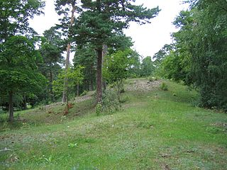 House of Munsö protohistoric Swedish dynasty