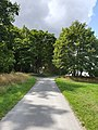 Blick auf Weg zum Bismarckturm bei JCRG Hof 14082019 004.jpg