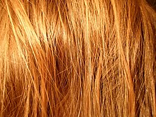 Red Hair Shampoo For Natural Red Hair