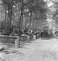 Bosbewerking, arbeiders, boomstammen, werkzaamheden, Bestanddeelnr 251-8141.jpg