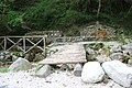 Bosco -Senerchia Oasi naturale Valle della Caccia -Avellino 20.jpg