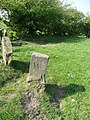Boundary stone off Whitley Road - geograph.org.uk - 2368212.jpg