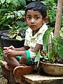 Boy in Garden - Bandarawela - Hill Country - Sri Lanka (14122245184).jpg
