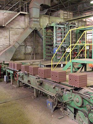 Brickworks - Large bricks on a conveyor belt in a modern European factory setting