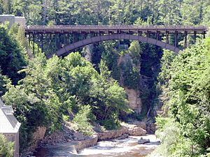 AuSable Chasm Bridge - Ausable Chasm Bridge