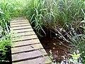 Bridge over the Burn - geograph.org.uk - 1381754.jpg