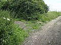 Bridleway junction east of Garston - geograph.org.uk - 499815.jpg