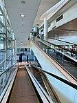 Brisbane International Terminal escalators.jpg