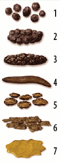 Bristol stool scale neutral.png