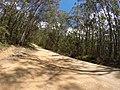 Brooman NSW 2538, Australia - panoramio (103).jpg